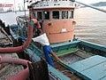 *イワシ漁船