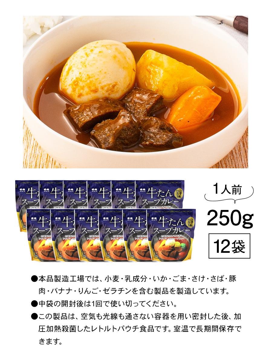牛たんスープカレー250g1p_08