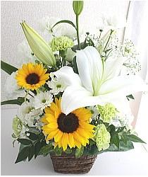 白い花とひまわりのお供え花