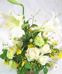百合とオンシジュームのお供え花