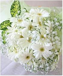 白いガーベラの花束