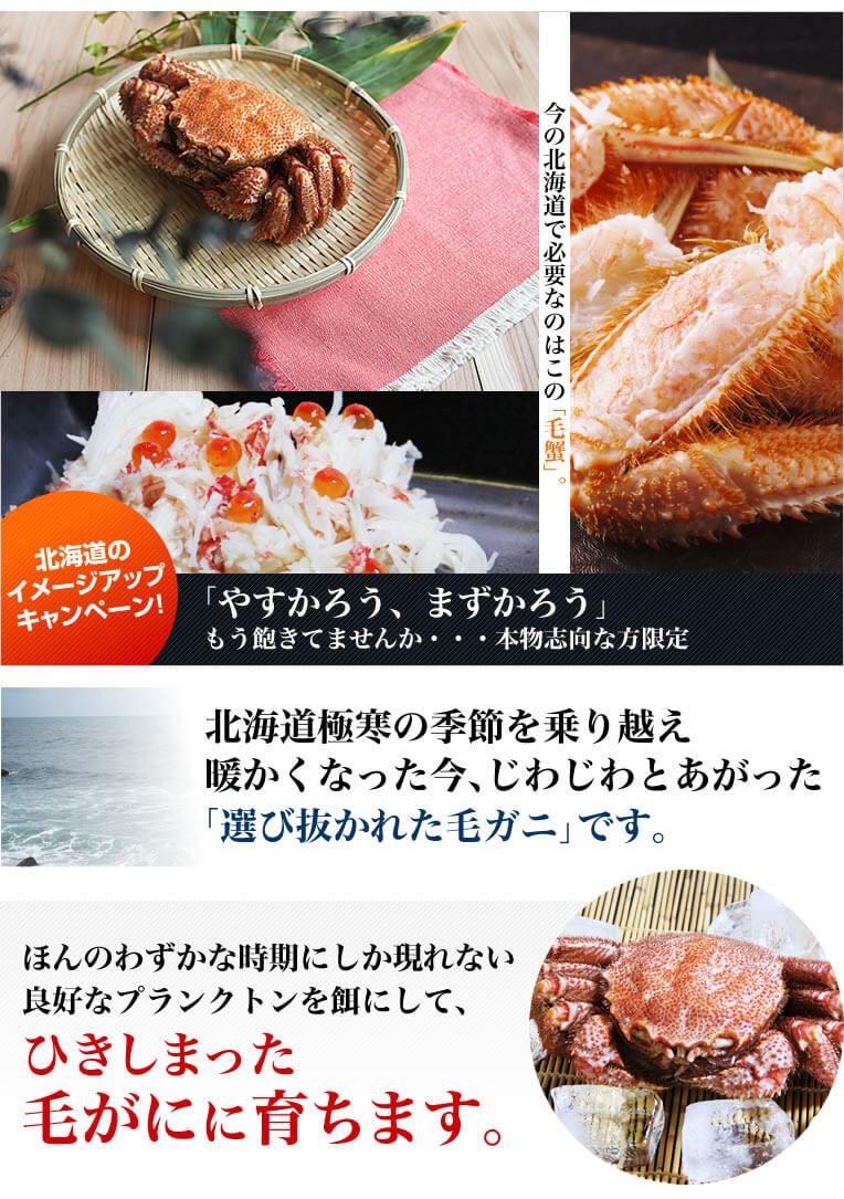 茹で方と配送方法で味は決まります。お取り寄せ通販の常識を破った、お取り寄せのとは思えないコクと深み。今まで食べた「解凍して食べる冷凍蟹」との差を、ご自身の舌で実感してください!