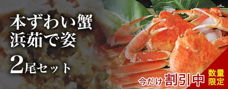 ずわい蟹2尾セット