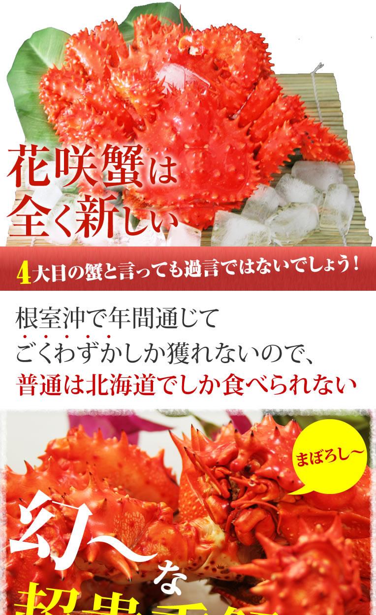 北海道を代表する3大蟹といえば、毛ガニ・ズワイ・たらばですが、全く新しい4大目の蟹と言っても過言ではないでしょう。見た目のトゲトゲしさからは想像もつかない程の美味しさ!メスは内子と外子が大人気!マニア必見!ジューシーな身と濃厚な味噌とプチプチ卵を味わえるのはこの花咲蟹の醍醐味です!!