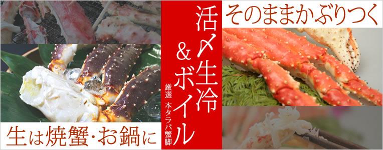 本たらば蟹脚 食べ比べ 活〆生冷&ボイルセット!