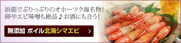 かにまみれ-敬老の日特集-北海シマエビ