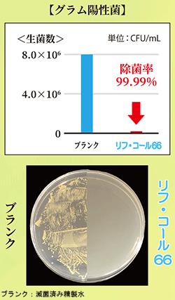 除菌試験【グラム陽性菌】/リンダ リフ・コール66