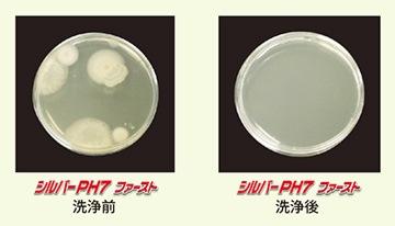 除菌効果/リンダ シルバーPH7ファースト