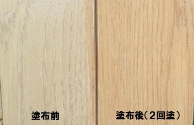 塗り見本/リンレイ カラーコート
