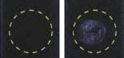 グリーンプラスフロアクリーナー/ワックス被膜塗布損傷度テスト