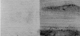 リンレイ プロインパクト中性/皮脂汚れ実験