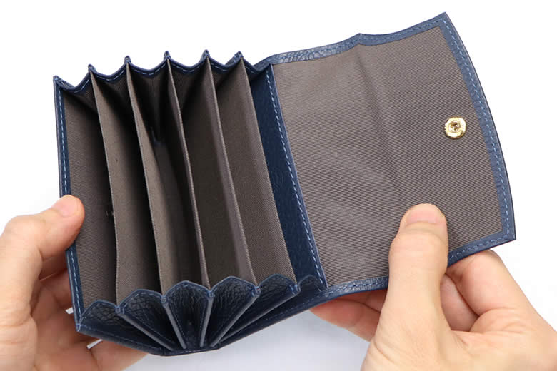 6つの蛇腹式カードポケット