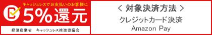 キャッシュレス・ポイント還元事業