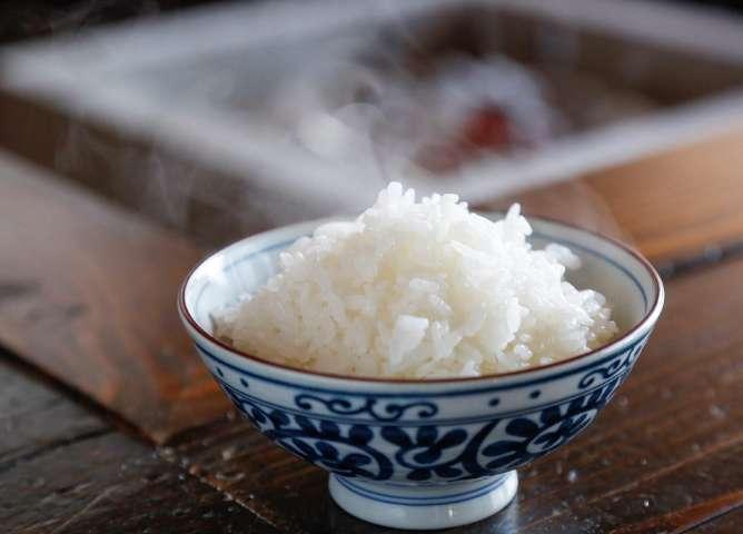 最適な土壌で育つ稲は美味しいお米を実らせる