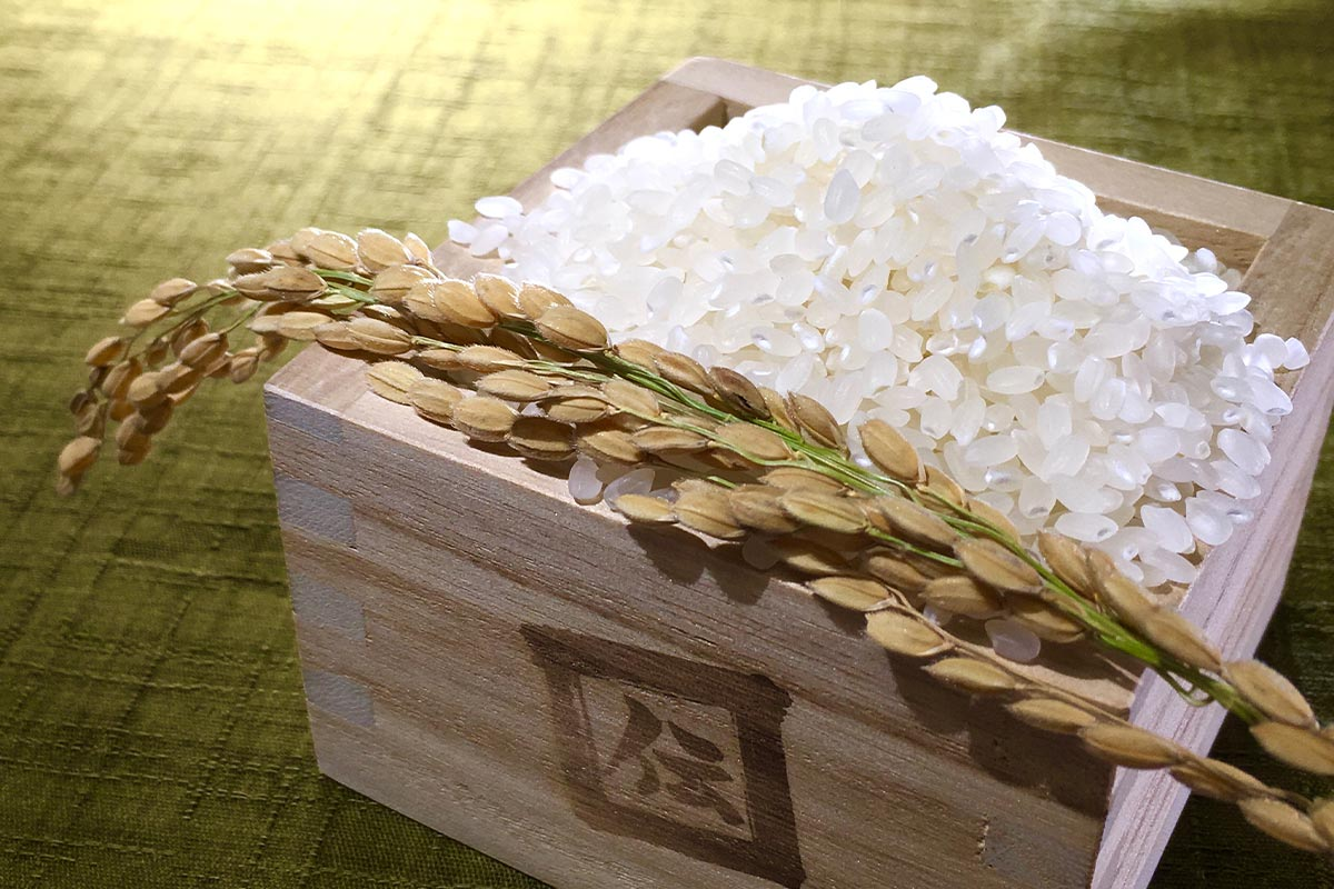 安全な米づくり