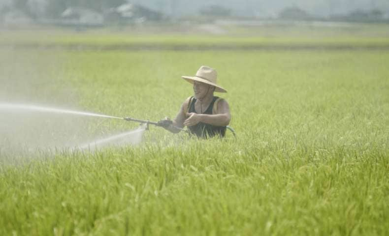 こだわりの農法:植酸栽培