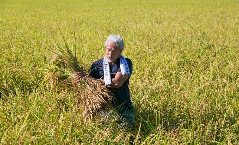 こだわりの農法:開封まで最高の状態で