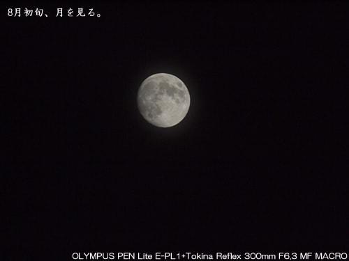 撮影例OLYMPUS PEN Lite E-PL1 + Tokina Reflex 300mm F6.3 MF MACRO