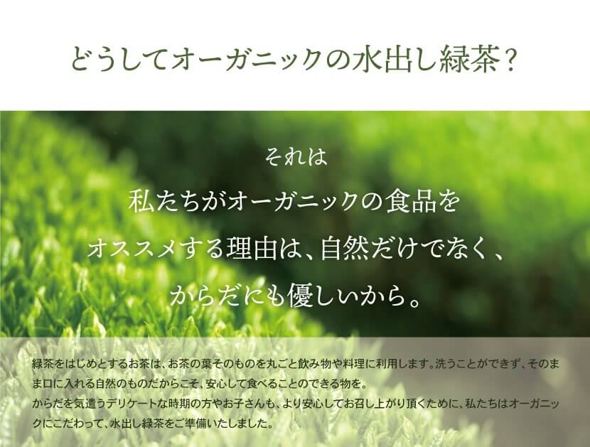 鹿児島産オーガニック水出し緑茶