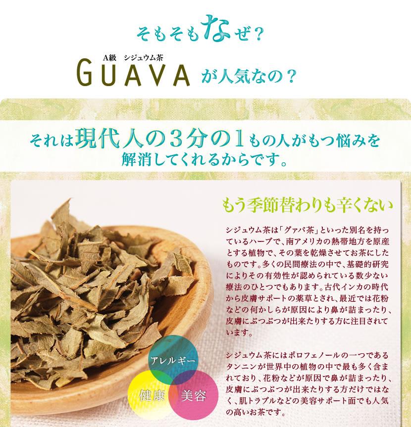 シジュウム、グァバ茶とは