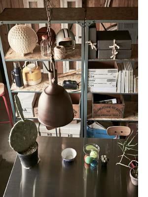 plant pendantlight
