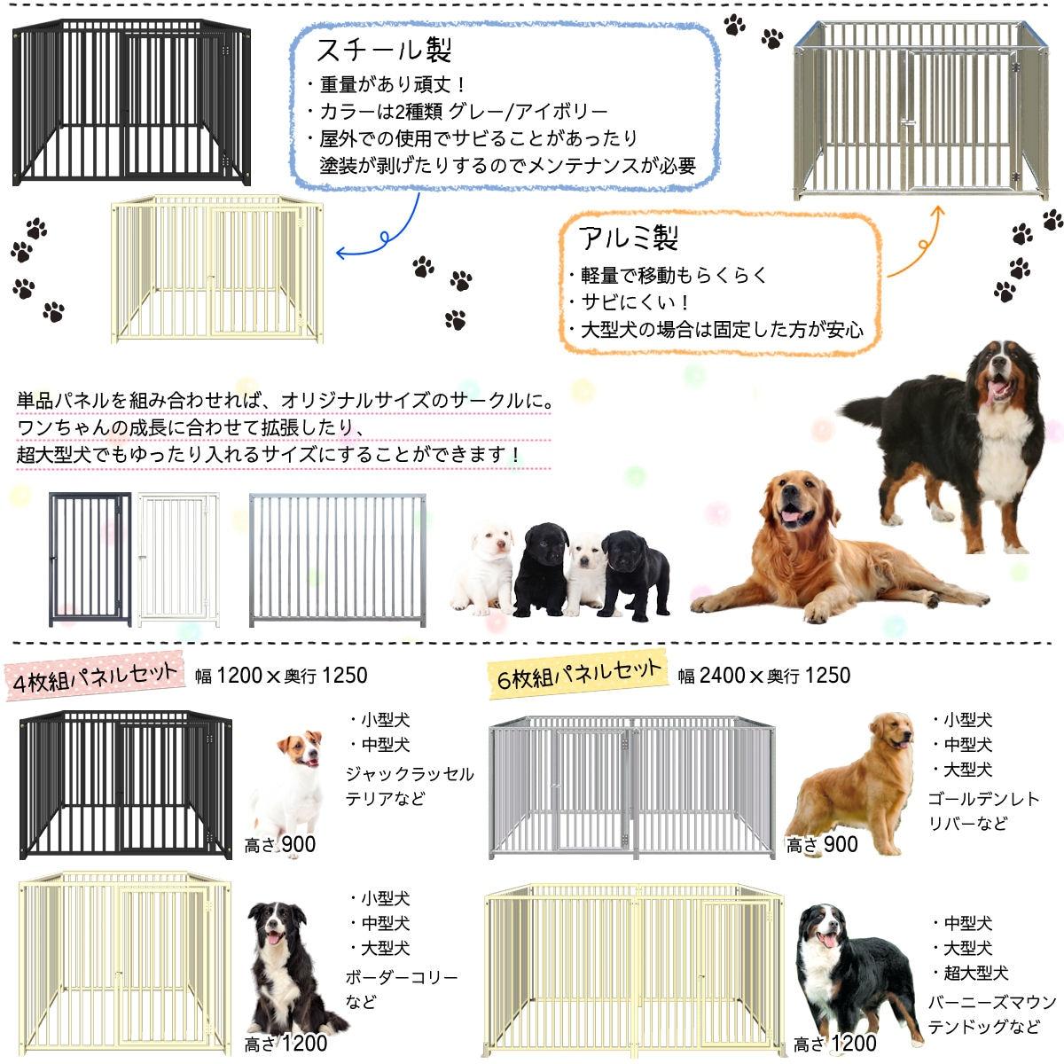 犬top-2