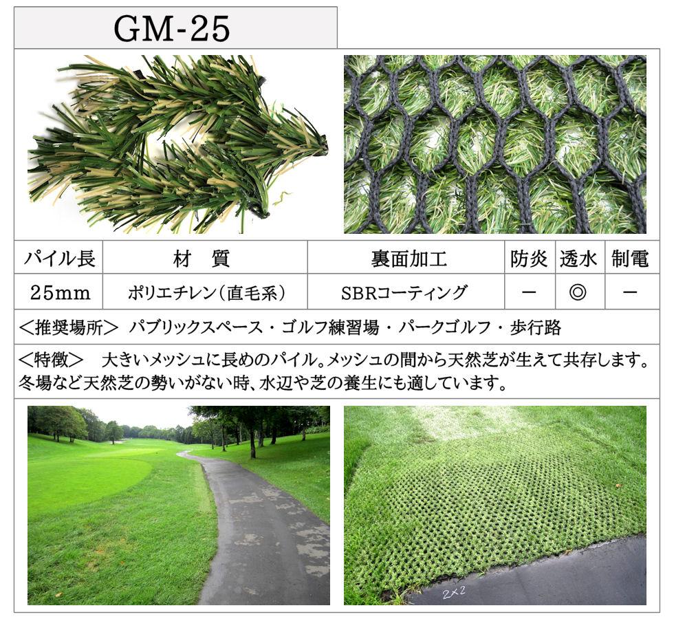 GM-25-詳細