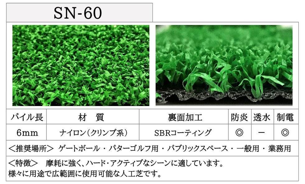 SN-60-詳細