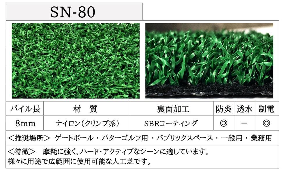 SN-80-詳細