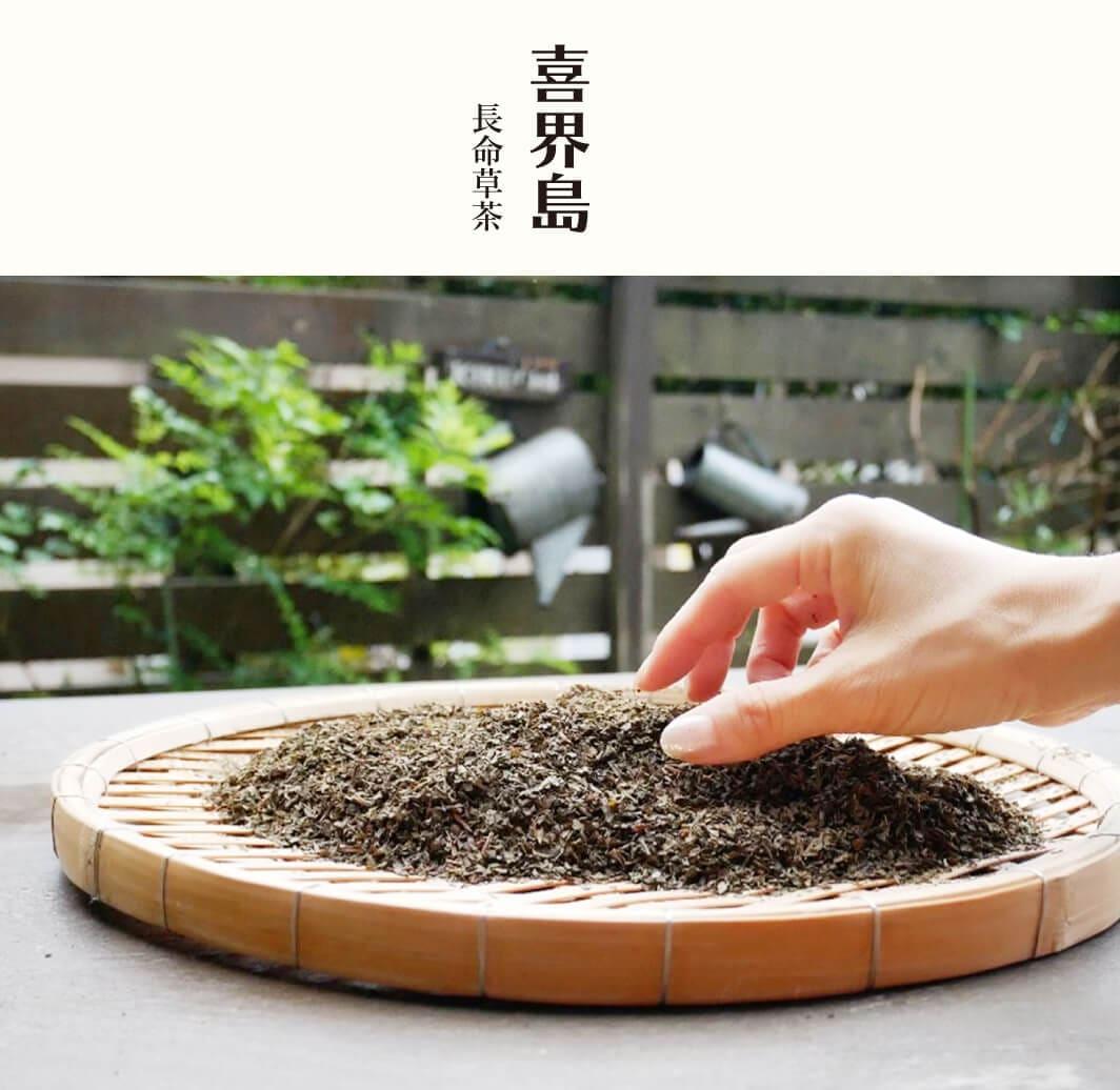 送料無料!喜界島の長命草茶 ティーバッグ 5袋