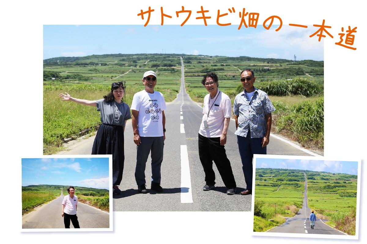 喜界島の人気スポット!サトウキビ畑の一本道