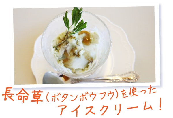 長命草(ボタンボウフウ)を使ったアイスクリーム