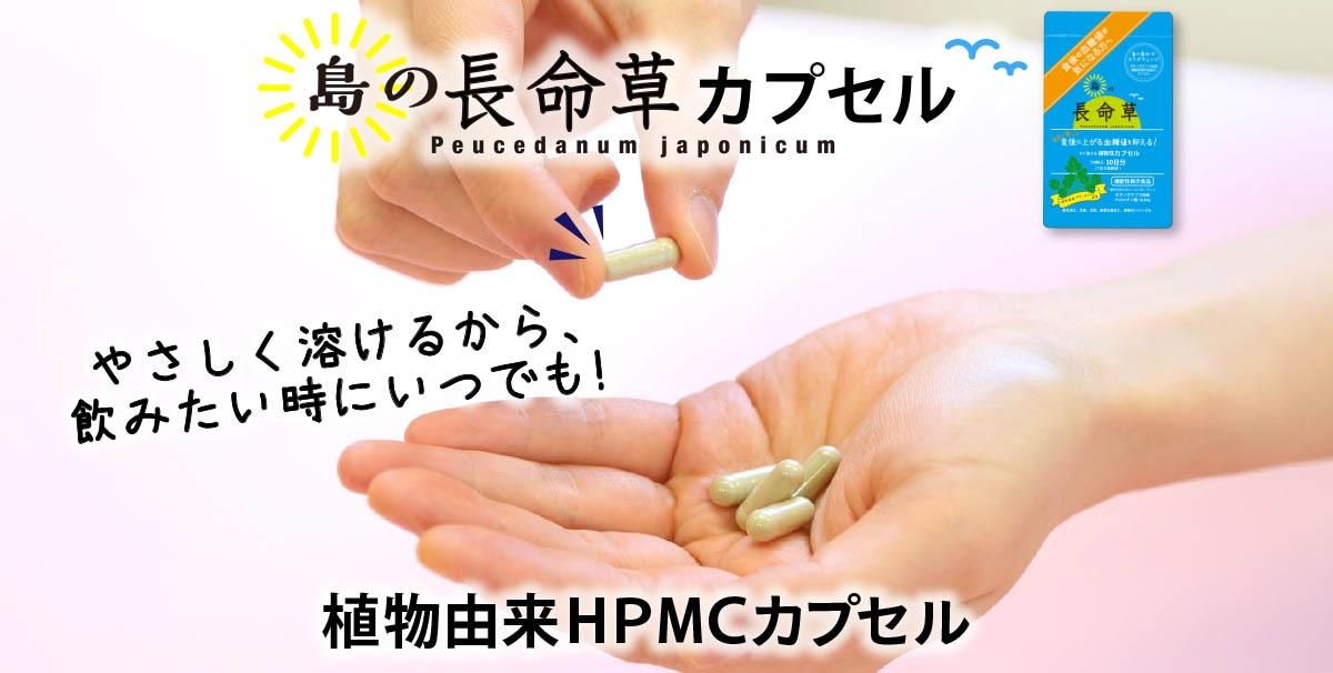 植物由来HPMCカプセルだからやさしく溶けて飲みたい時にいつでも!