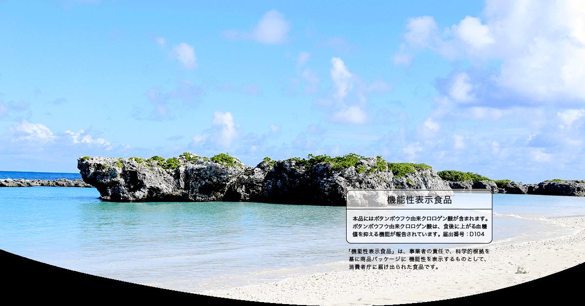 ミネラル豊富な隆起サンゴ礁の島、喜界島