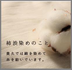柿渋染めのこと 貴久では綿を染めて糸を紡いでいます。