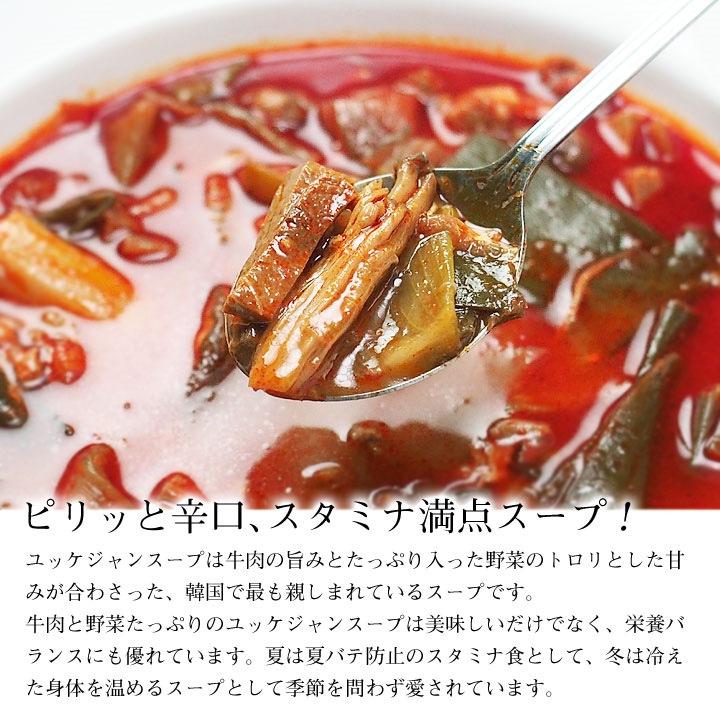辛口ビーフユッケジャンスープ
