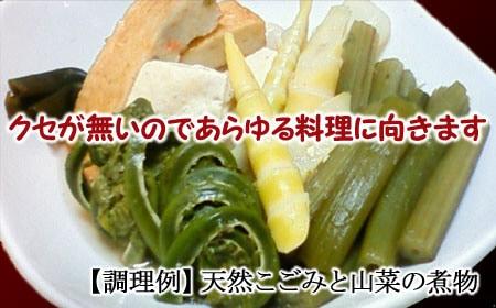 天然こごみと山菜の煮物