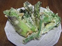 山うど(ヤマウド)の芽とたらの芽、こごみの天ぷら