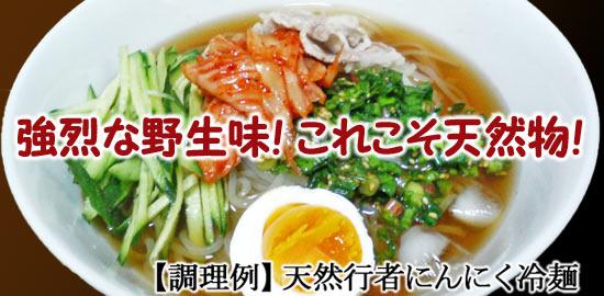行者にんにく冷面【天然きのこ山菜.com】
