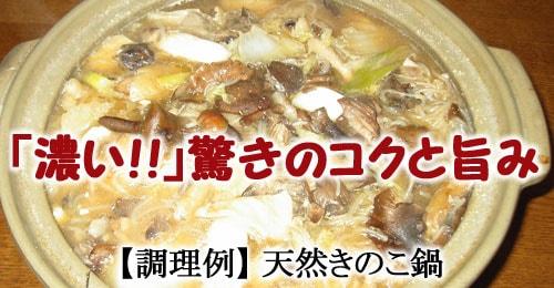 天然きのこ鍋