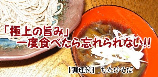 『ちたけそば』【天然きのこ山菜.com】