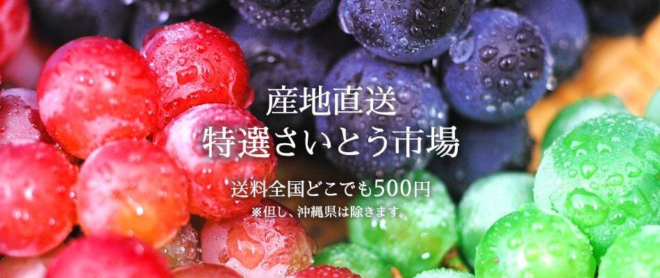 産地直送 特選さいとう市場 送料全国どこでも500円 ※但し、沖縄県は除きます。