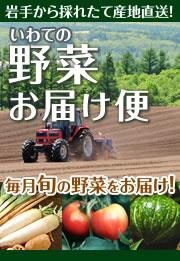 いわての畑から採れたて新鮮 【 野菜お届け便 】