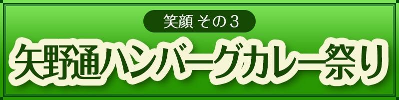 笑顔その3矢野通ハンバーグカレー祭り