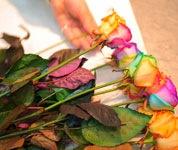 1本1本プロの目で確かめて、バランスよく仕上げる花束