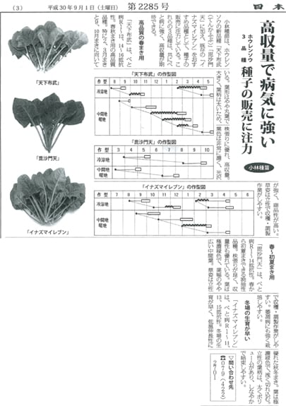 弊社のホウレンソウ3品種が紹介されました。