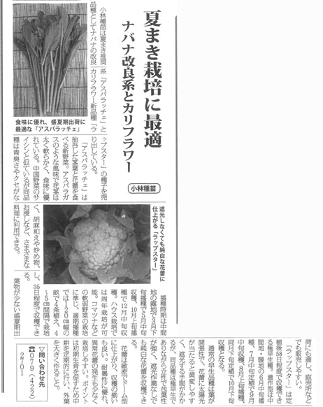 「アスパラッチェ」「ラップスター」の記事が掲載されました。