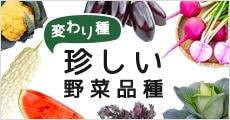 珍しい野菜品種