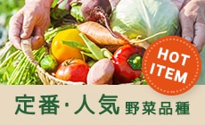 定番・おすすめ野菜品種