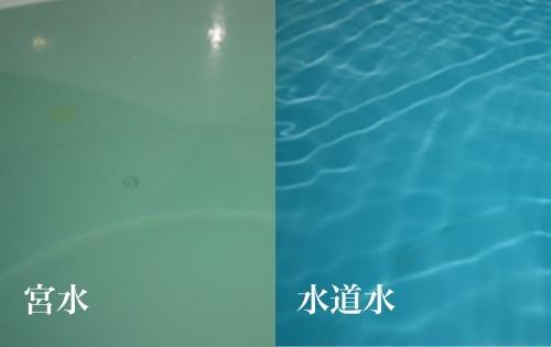 宮水 水道水